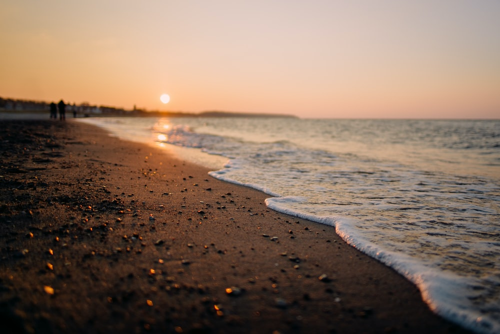 shoreline during sunset