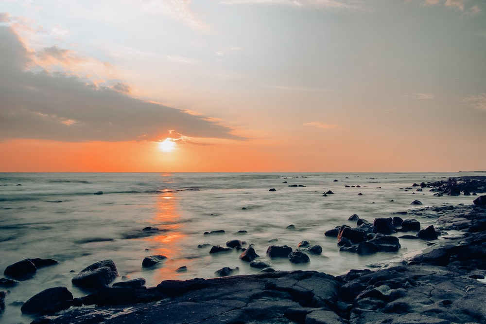 rocky seashore under golden sun