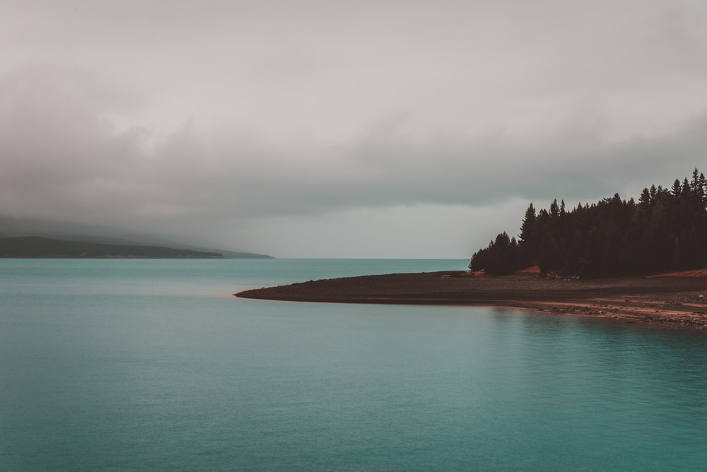 landscape photography of green beach under nimbus clouds