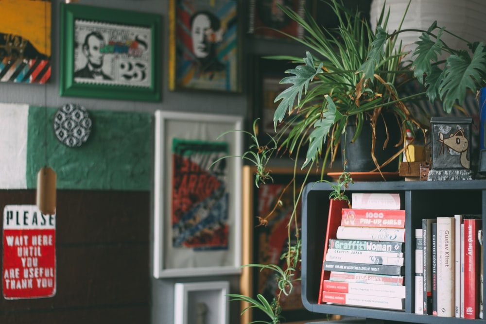 assorted book on gray wooden shelf