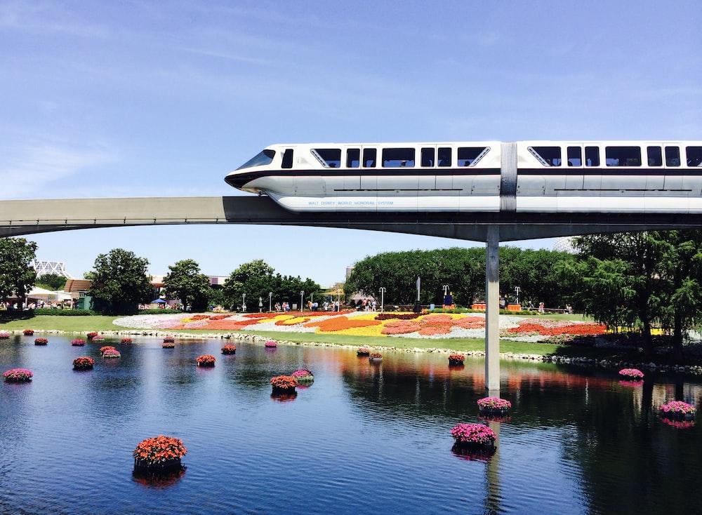 white train and bridge