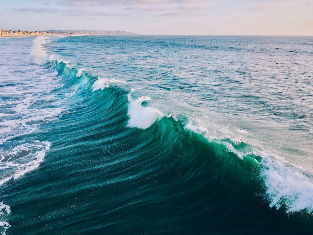 landscape photo of wave during daytime