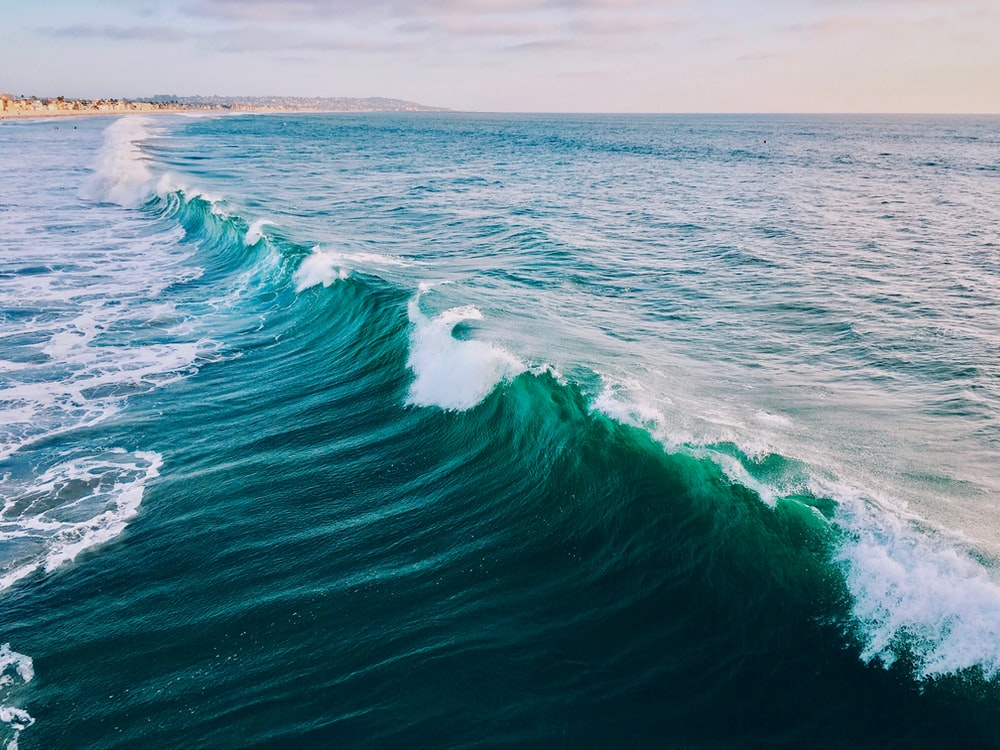 landscape photo of wave during daytime