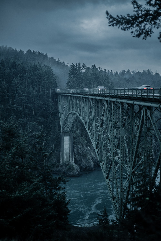 gray metal bridge across river