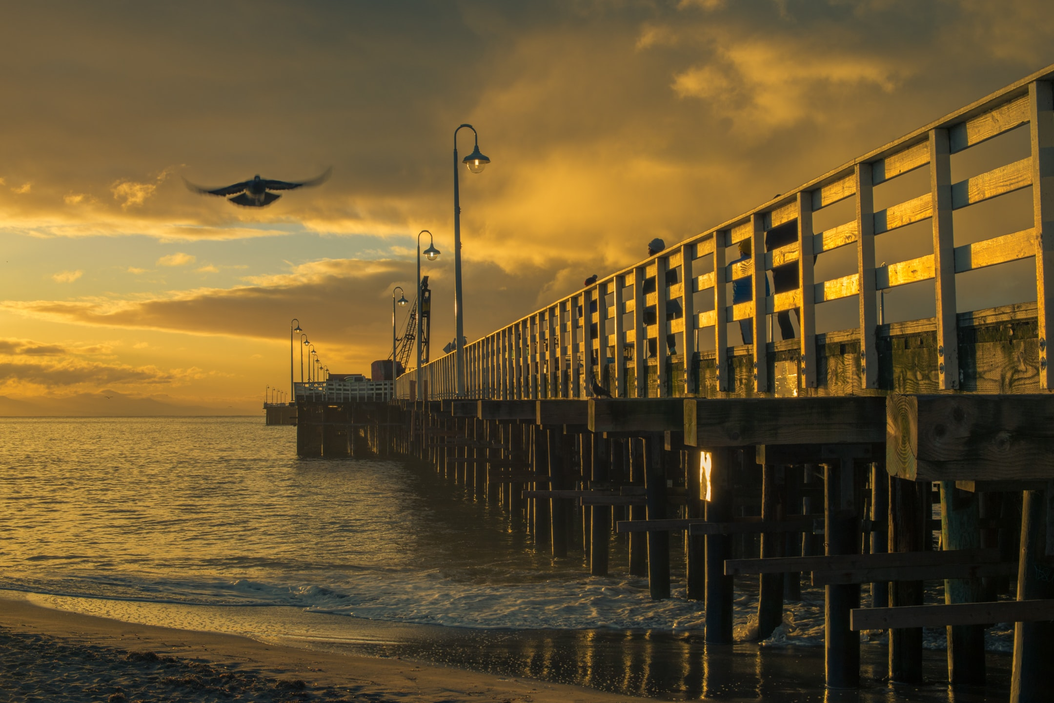beach dock under golden hour