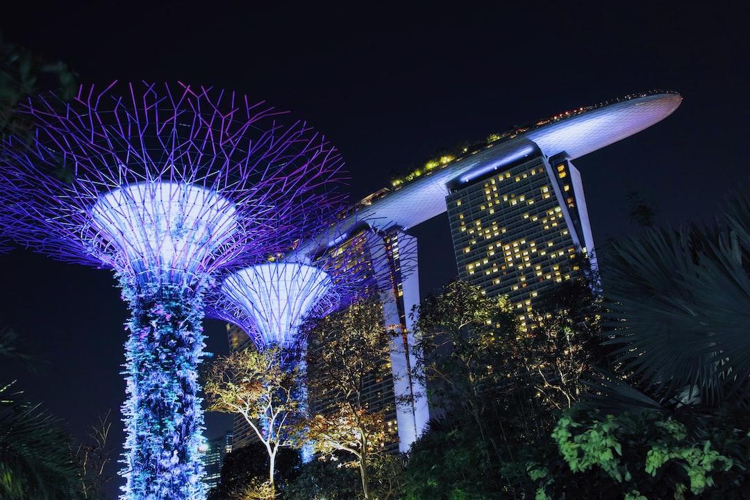 Super Tree & Marina Bay Sands Hotel