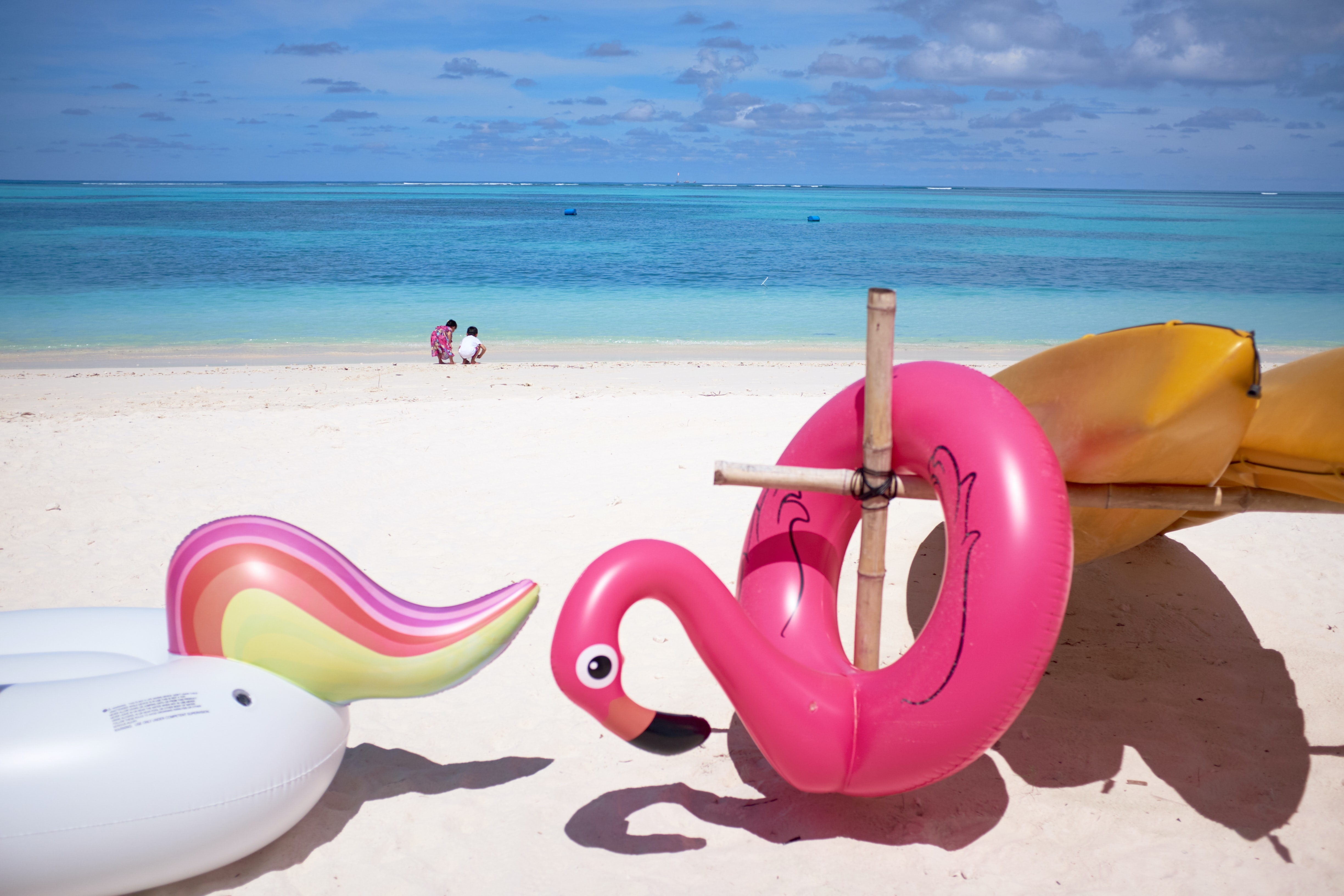 pink flamingo floater in front ocean