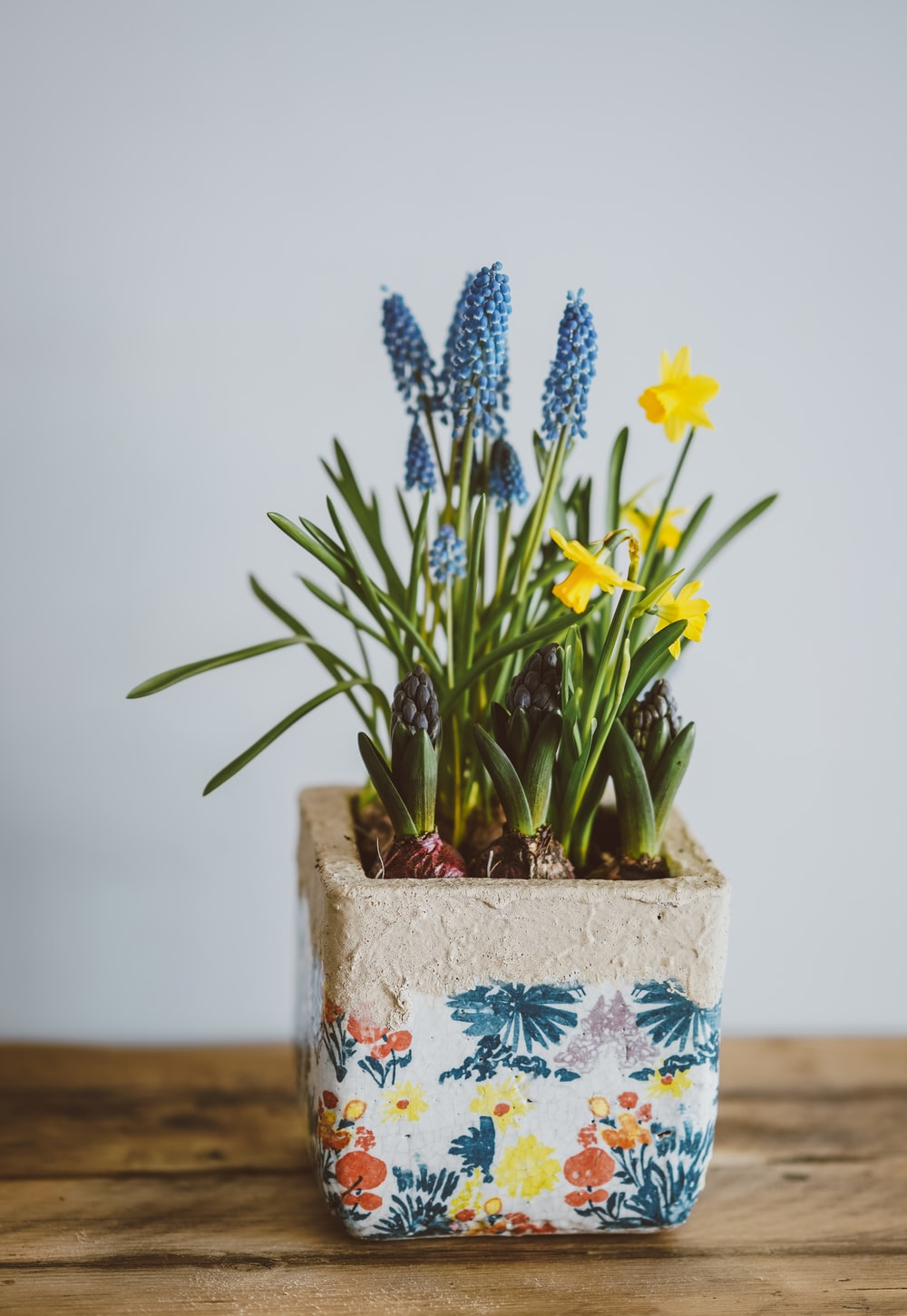 yellow and blue flowers on vase