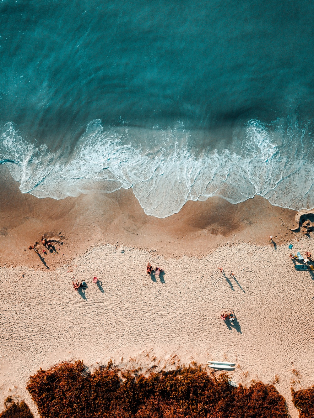 aerial photography of people near shoreline