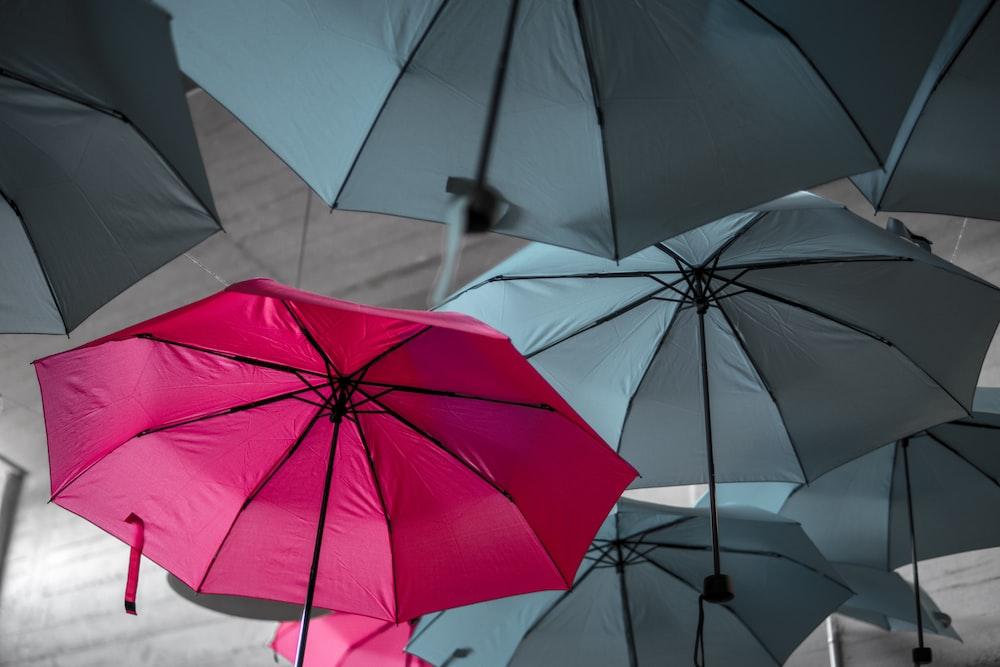 assorted umbrellas hanging on ceiling