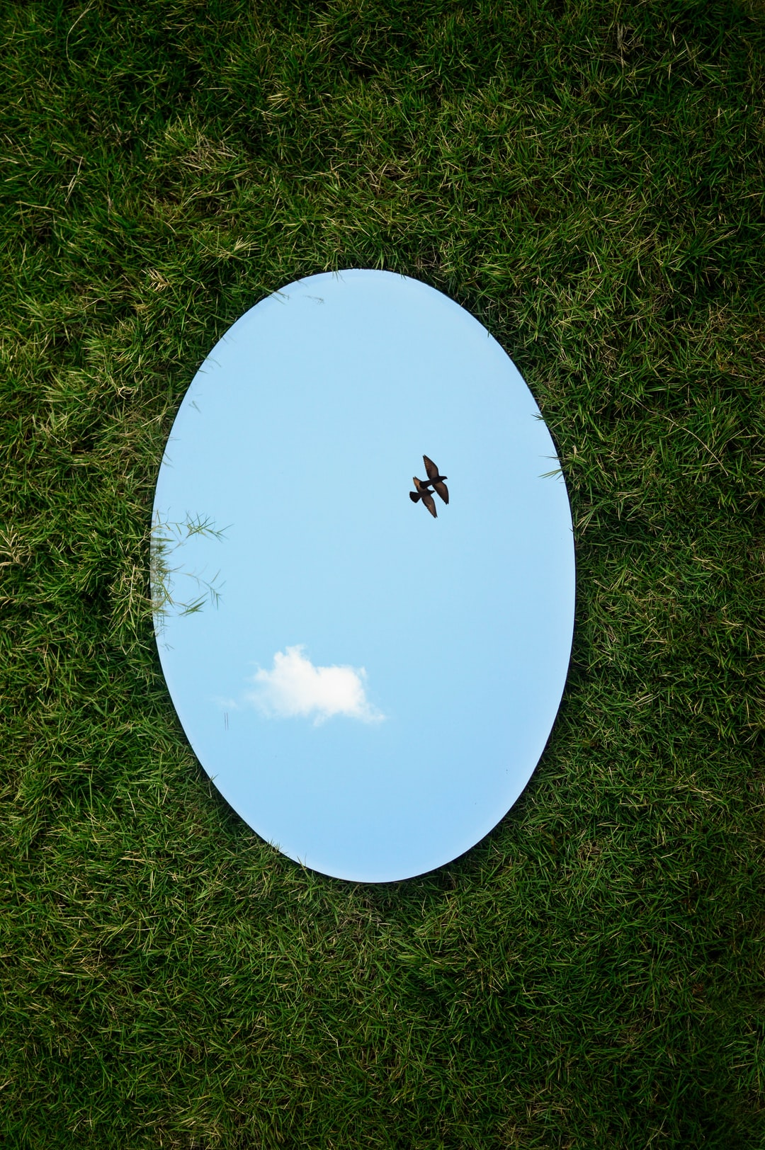 this photo was taken for a photography competition (amateur) with a theme 'Reflection'.