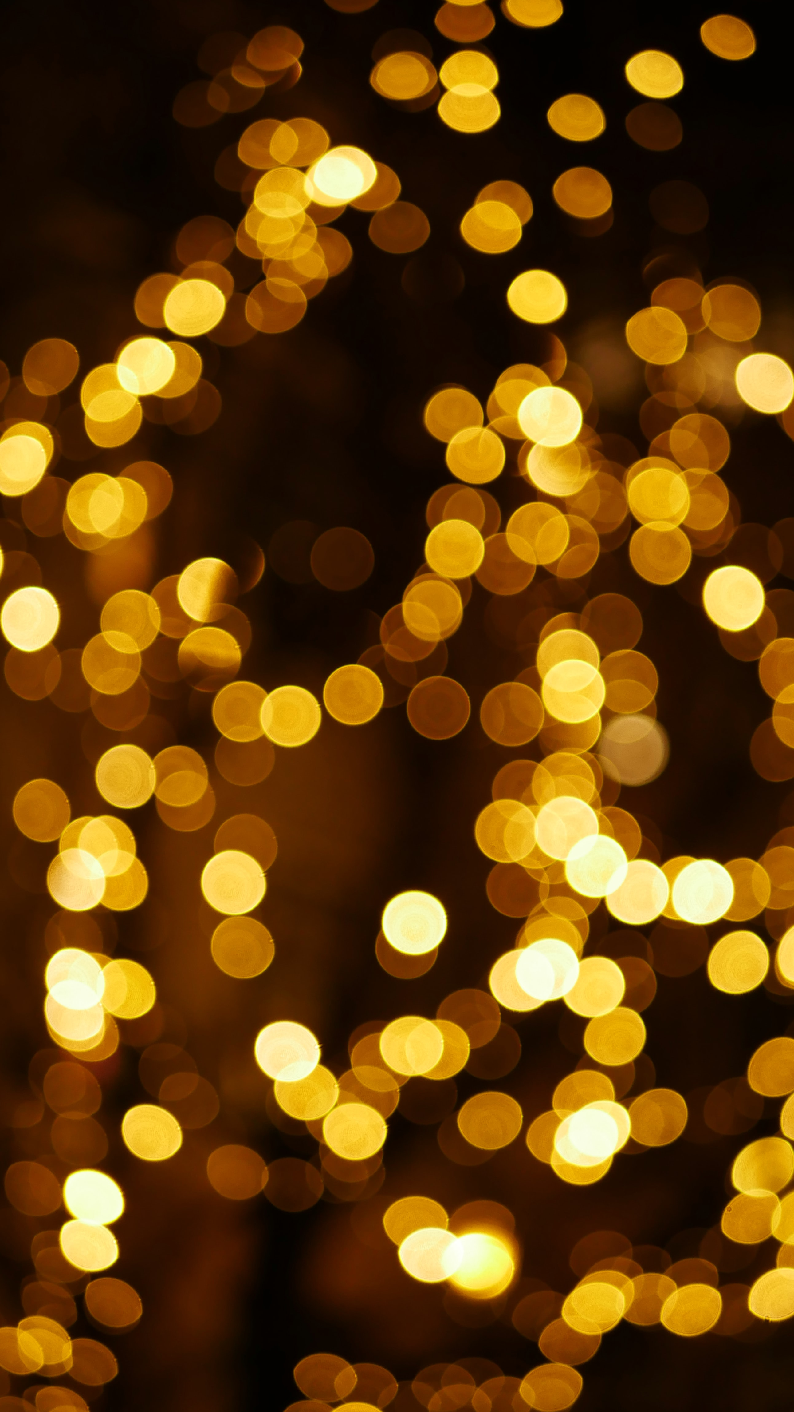 500 Christmas Lights Pictures Hd Download Free Images On Unsplash