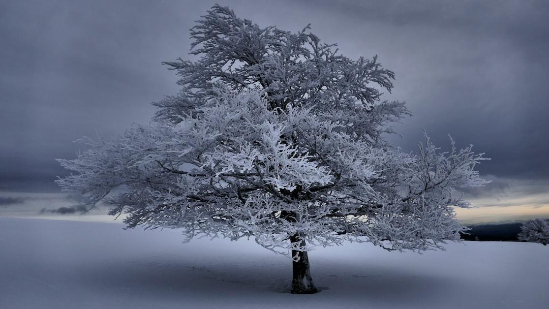 Les Cretes in winter