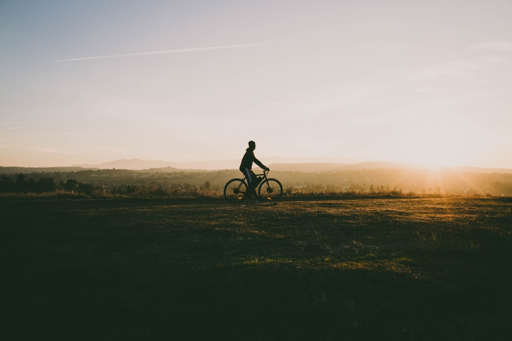 person riding bicycle near grass in sunset