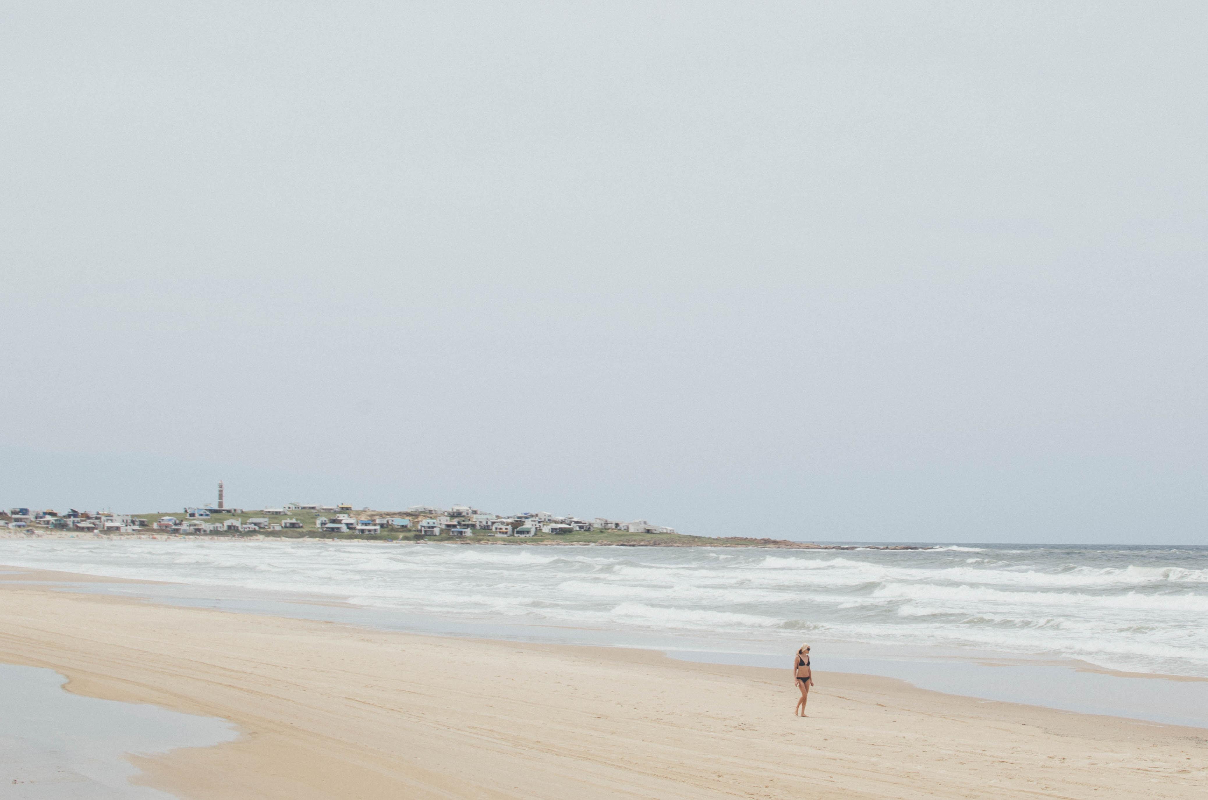 person walking near seashore during daytime