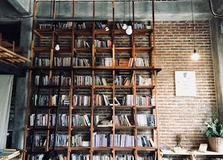 books on shelves