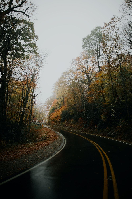 asphalt road during rainy day