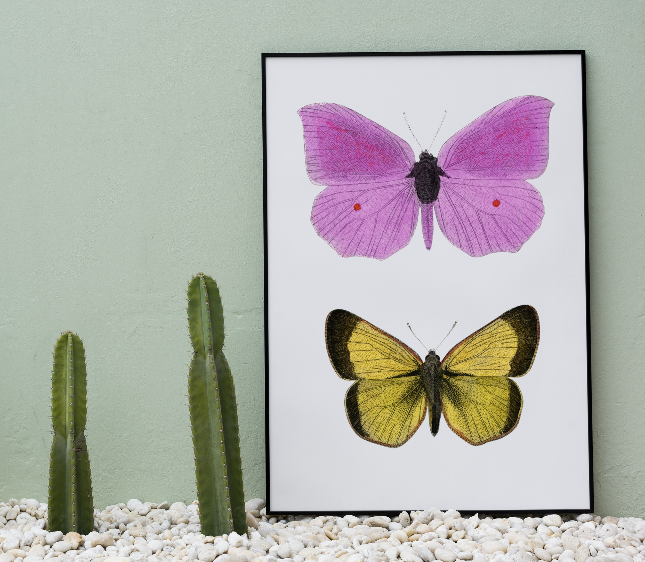 two pink and yellow butterflies painting near green cactus