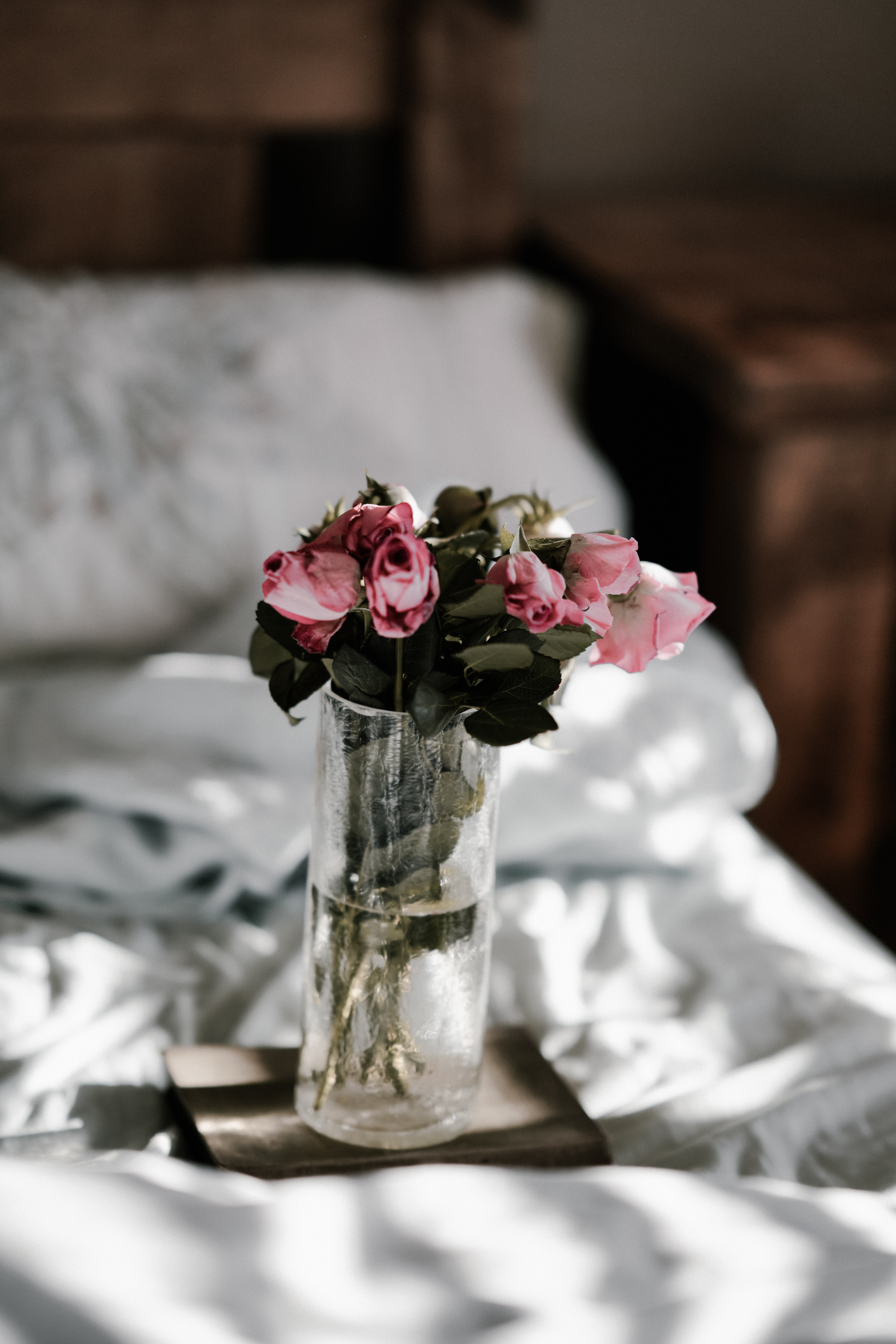 pink roses on clear glass vase