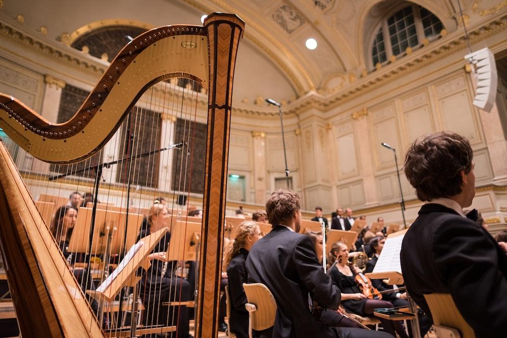 Harp Pictures | Download Free Images on Unsplash