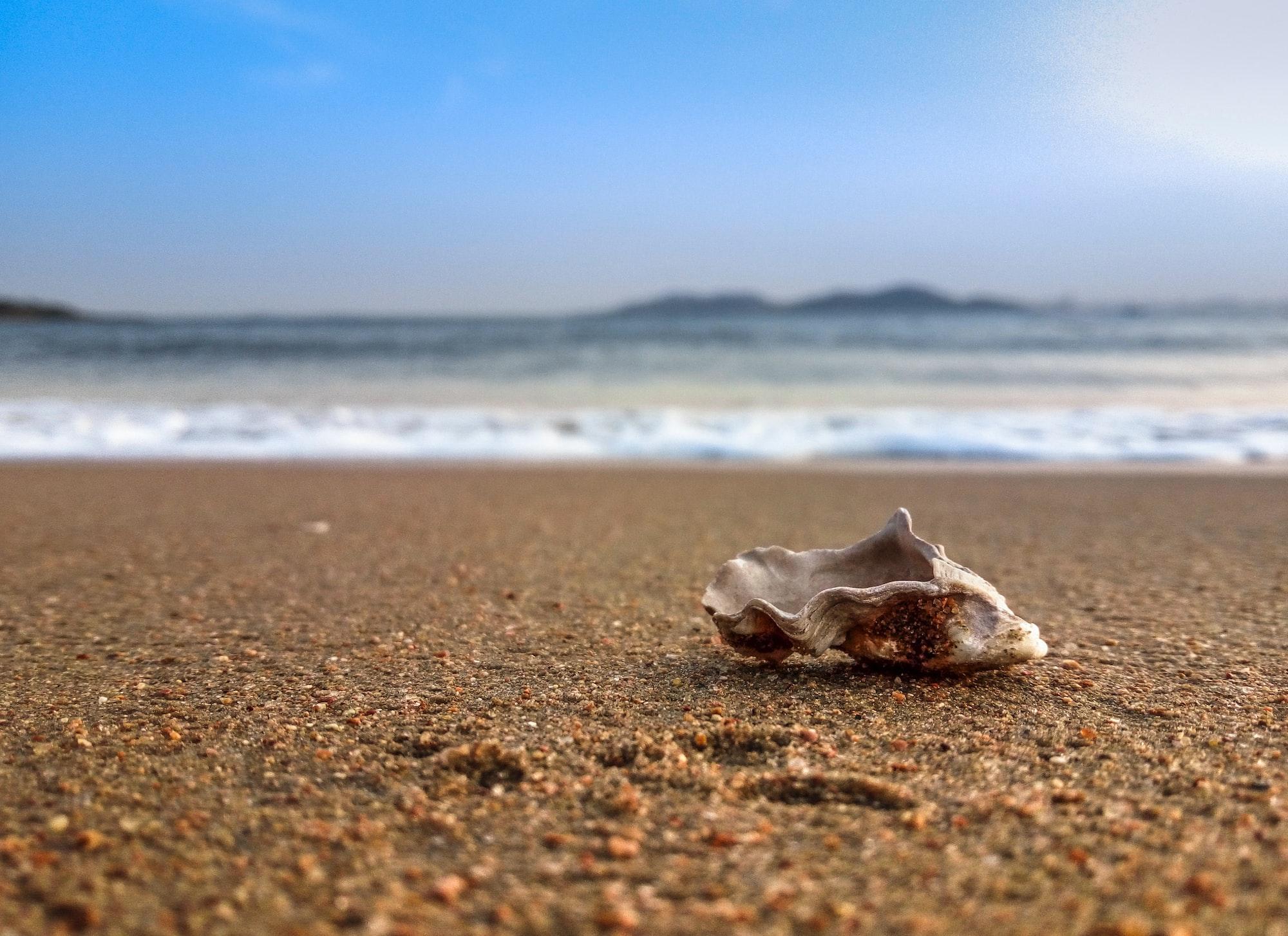 Cuando todo está a la venta, también se vende arena marina...