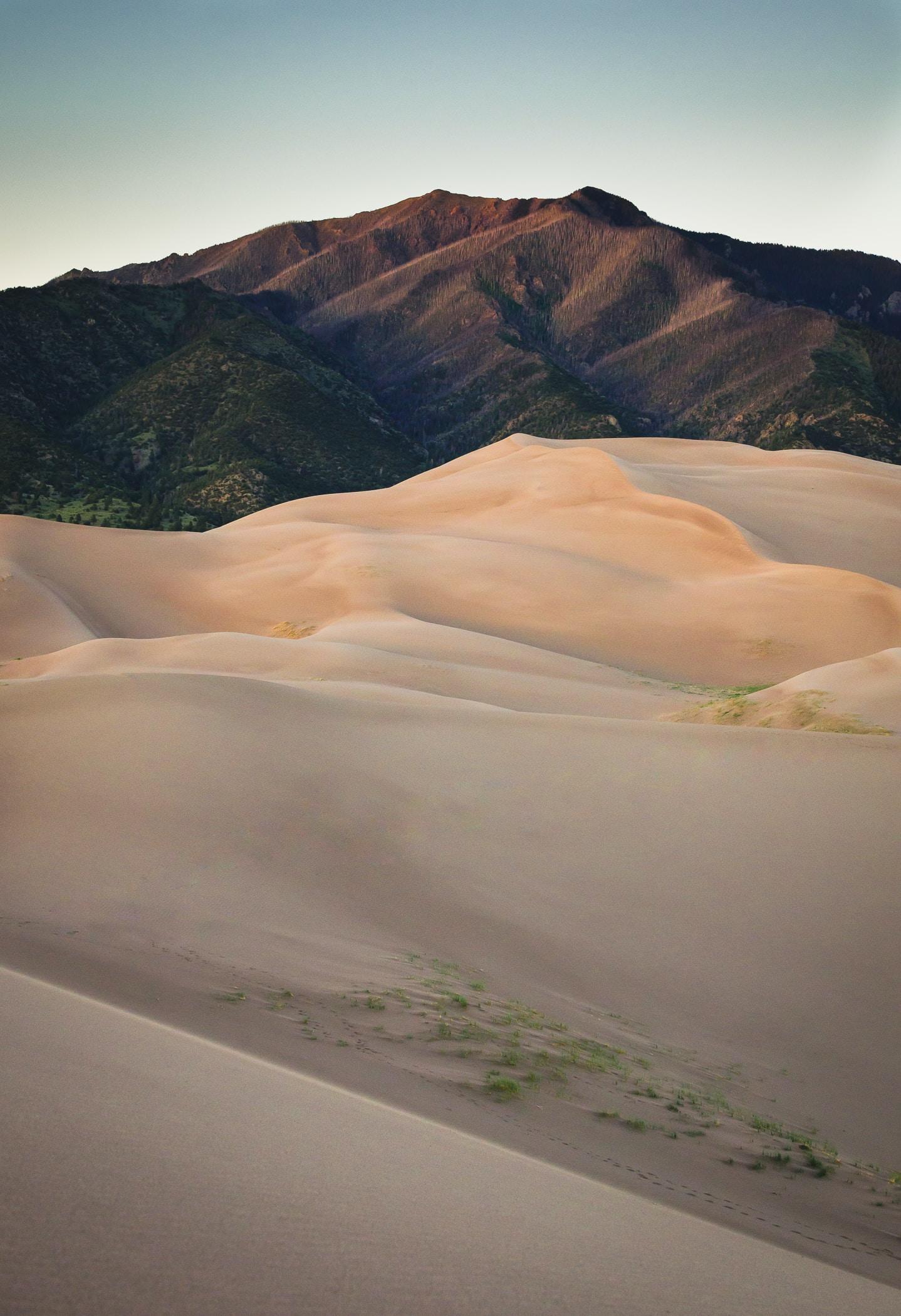 sand dunes near brown mountain