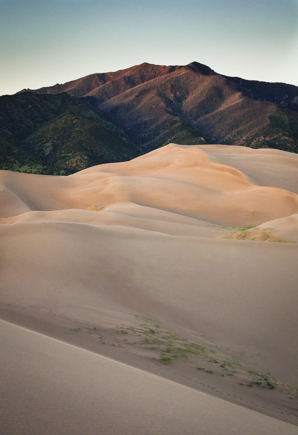 sand dunes near brown mountain