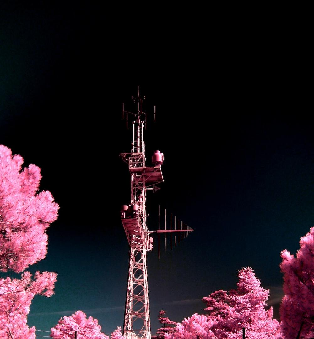 brown tower between pink leaf trees at nighttime