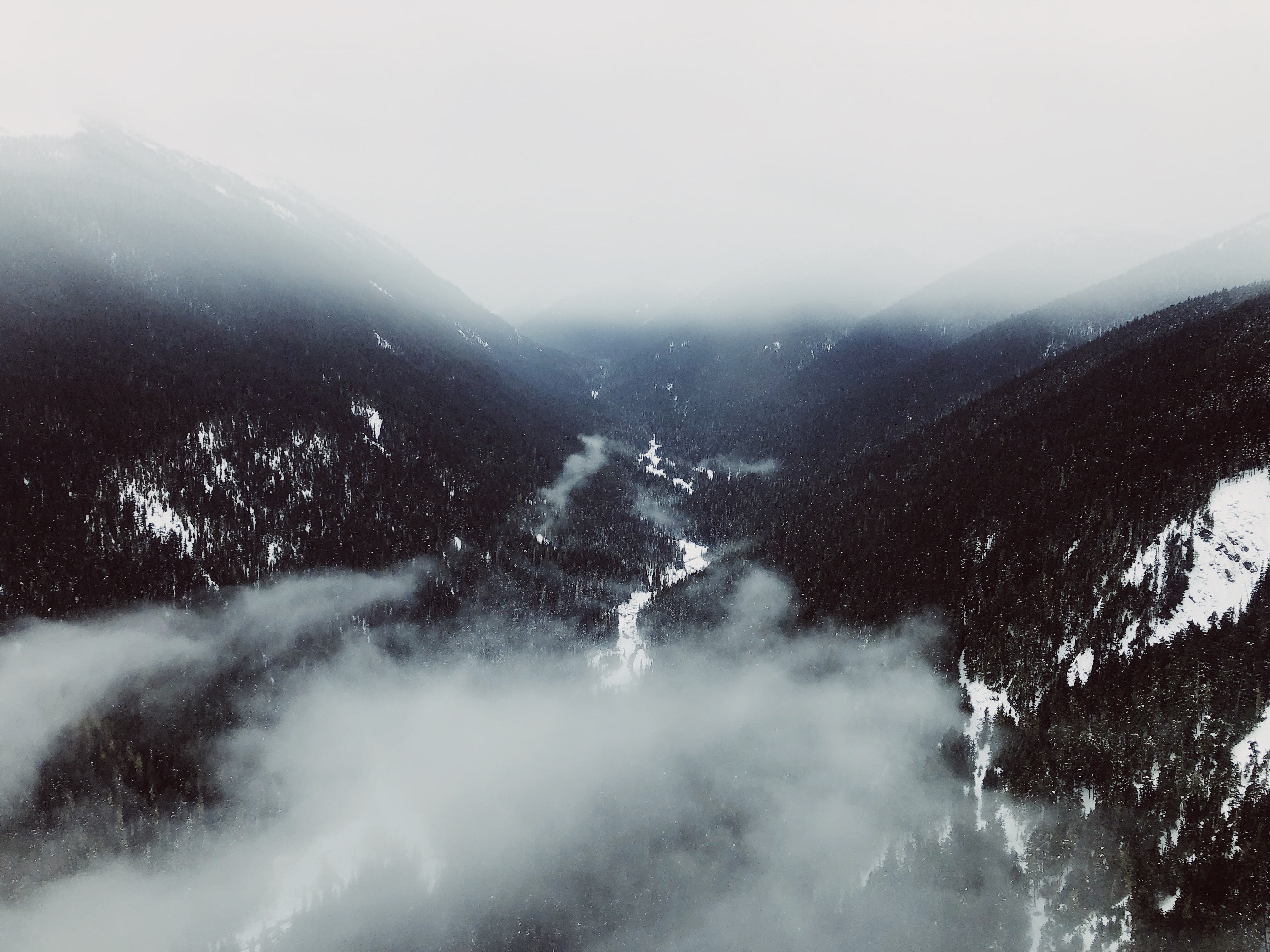 aerial photography of mountain range covered with fogs