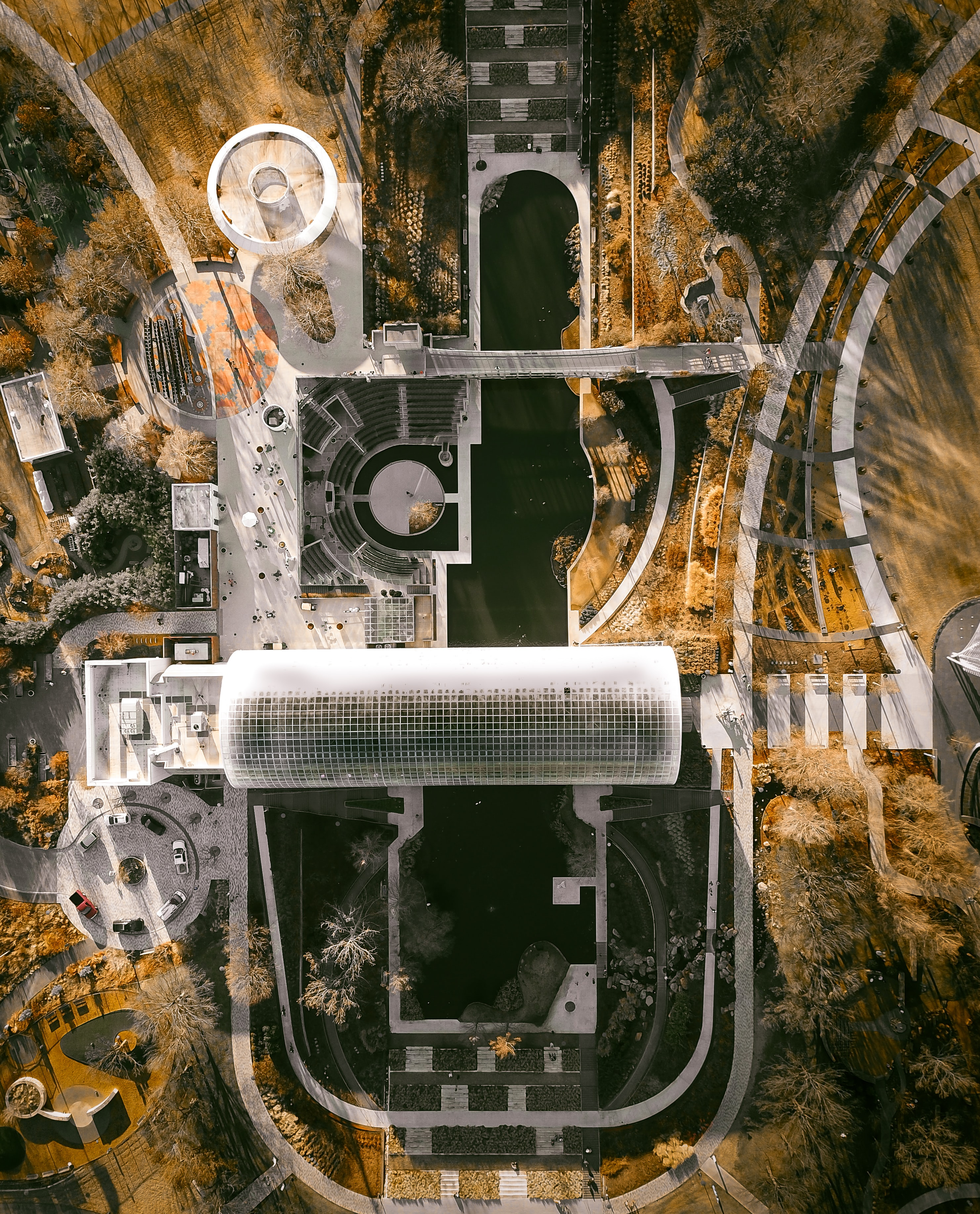 aerial photography of buildings surround by trees