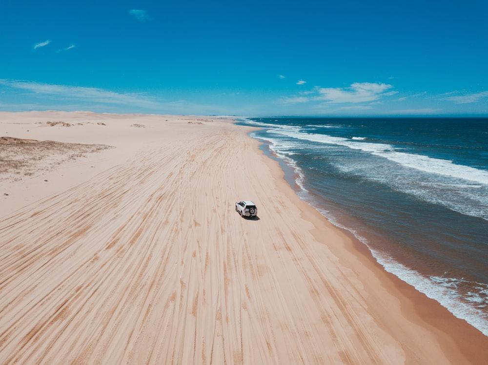 white SUV on seashore