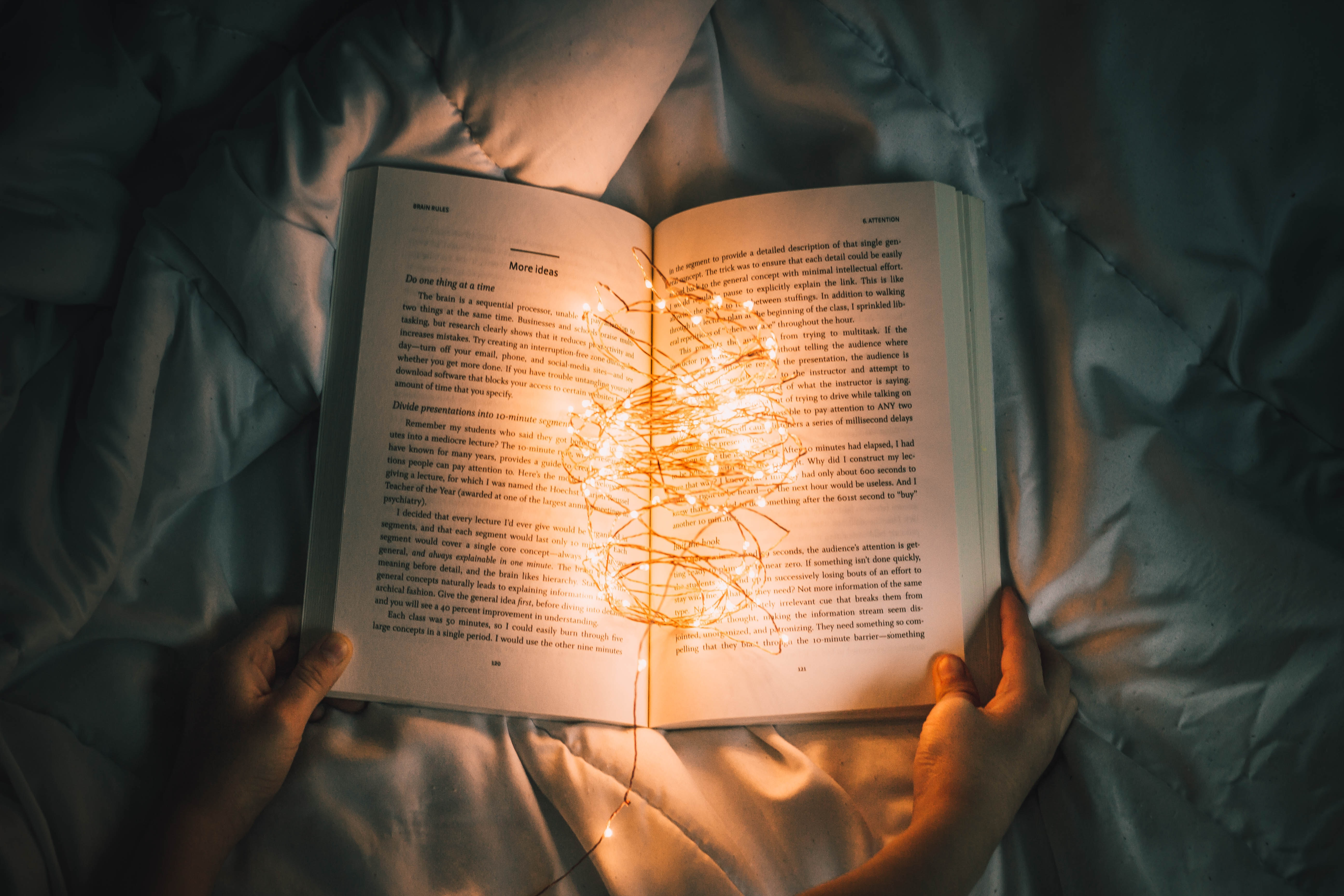 person holding string lights on opened book