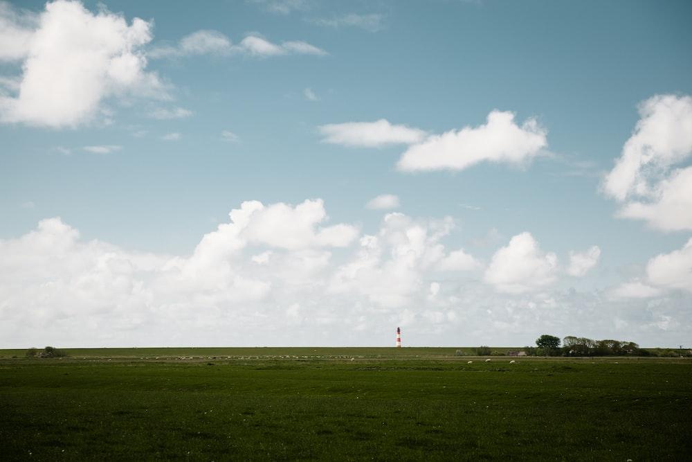 green grass field under clear blue sky