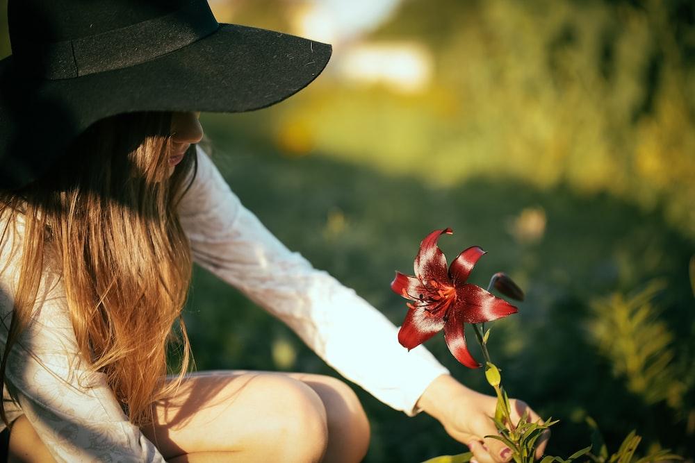 woman picking red flower during daytime