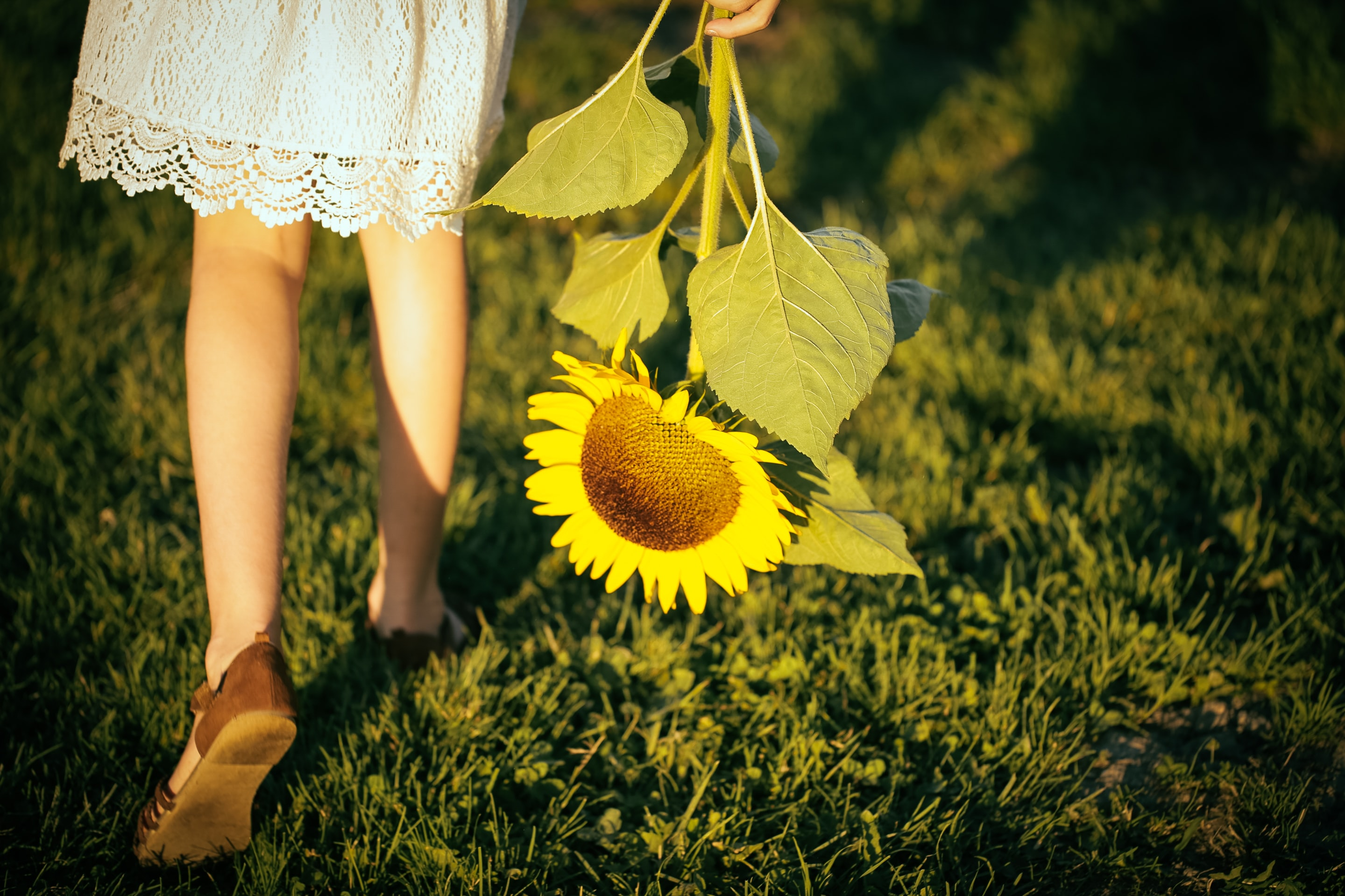 girl walking on grass field holding sunflower during day
