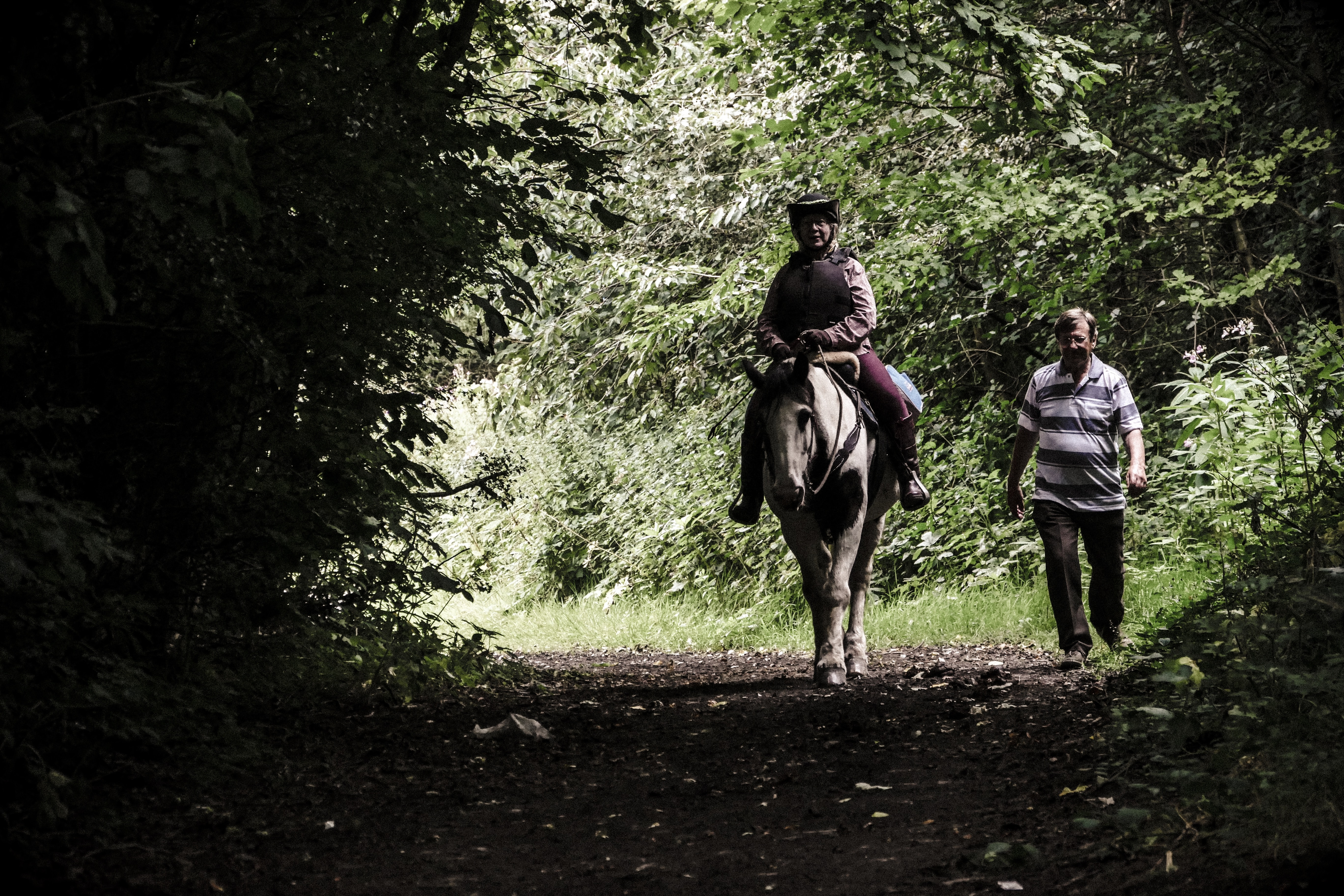 person riding on horse beside man walking on forest