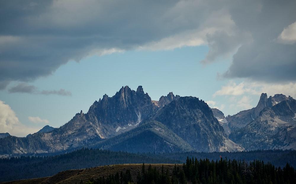 rocky mountain near forest
