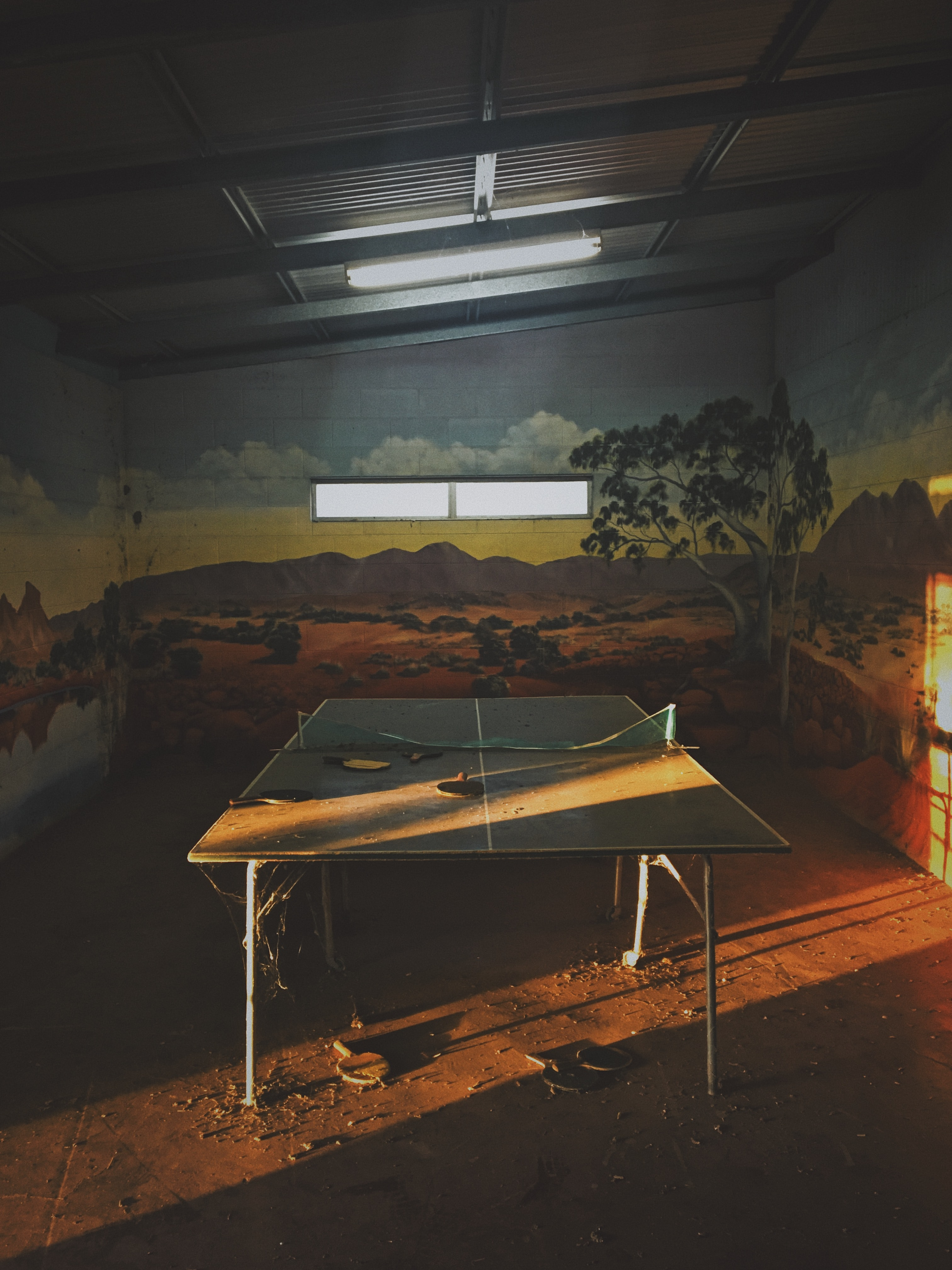 ping pong table indoor