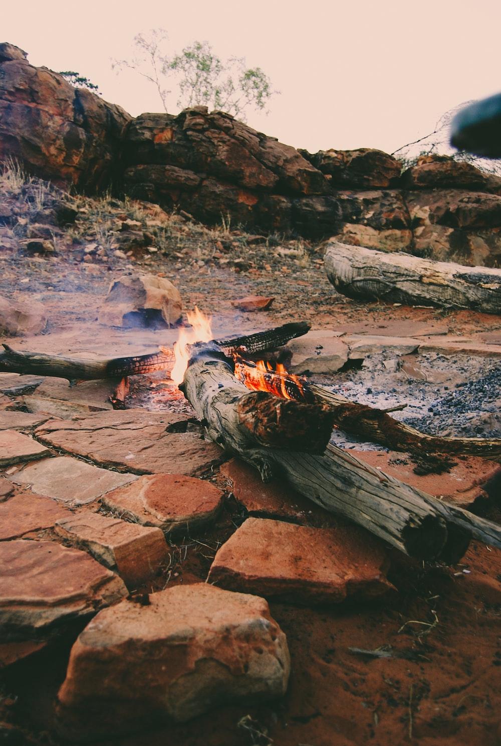 bonfire bear rocks at daytime