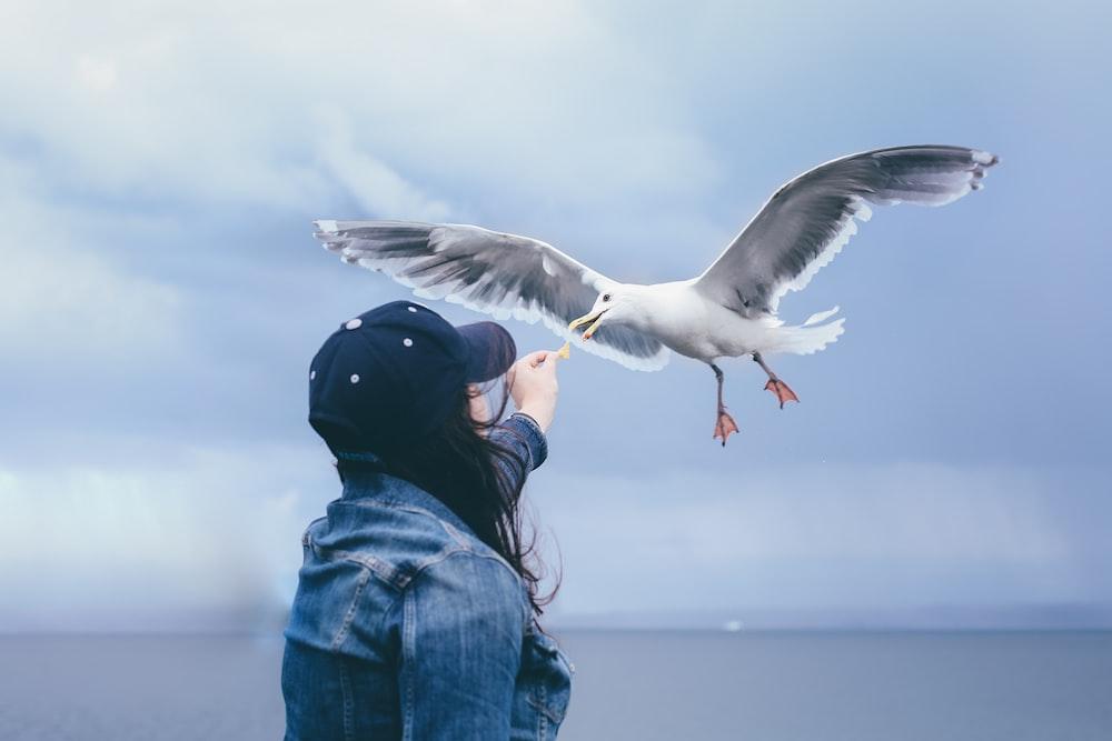 woman feeding flying seagull at daytime
