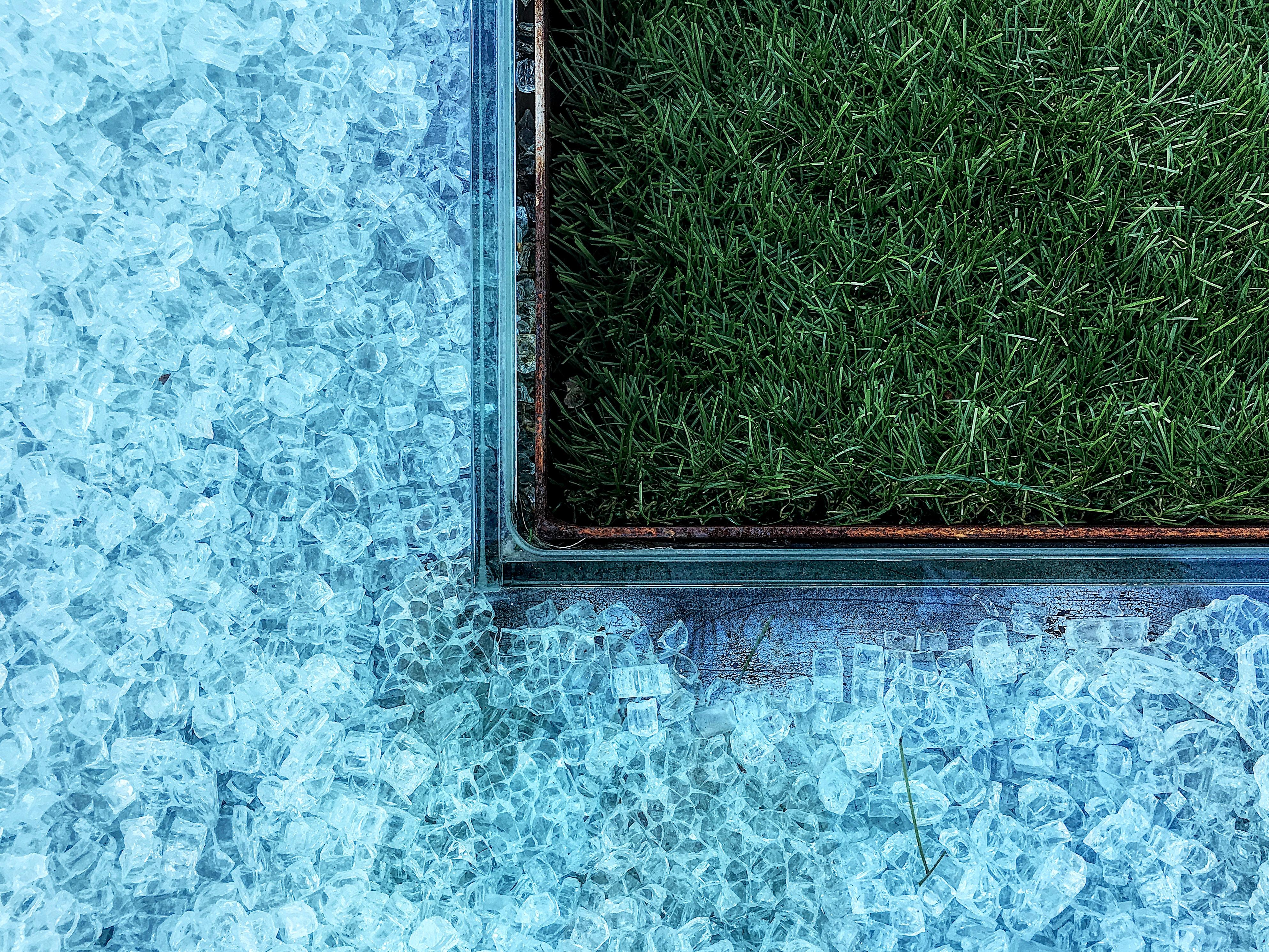 photo of green grasses near tiles