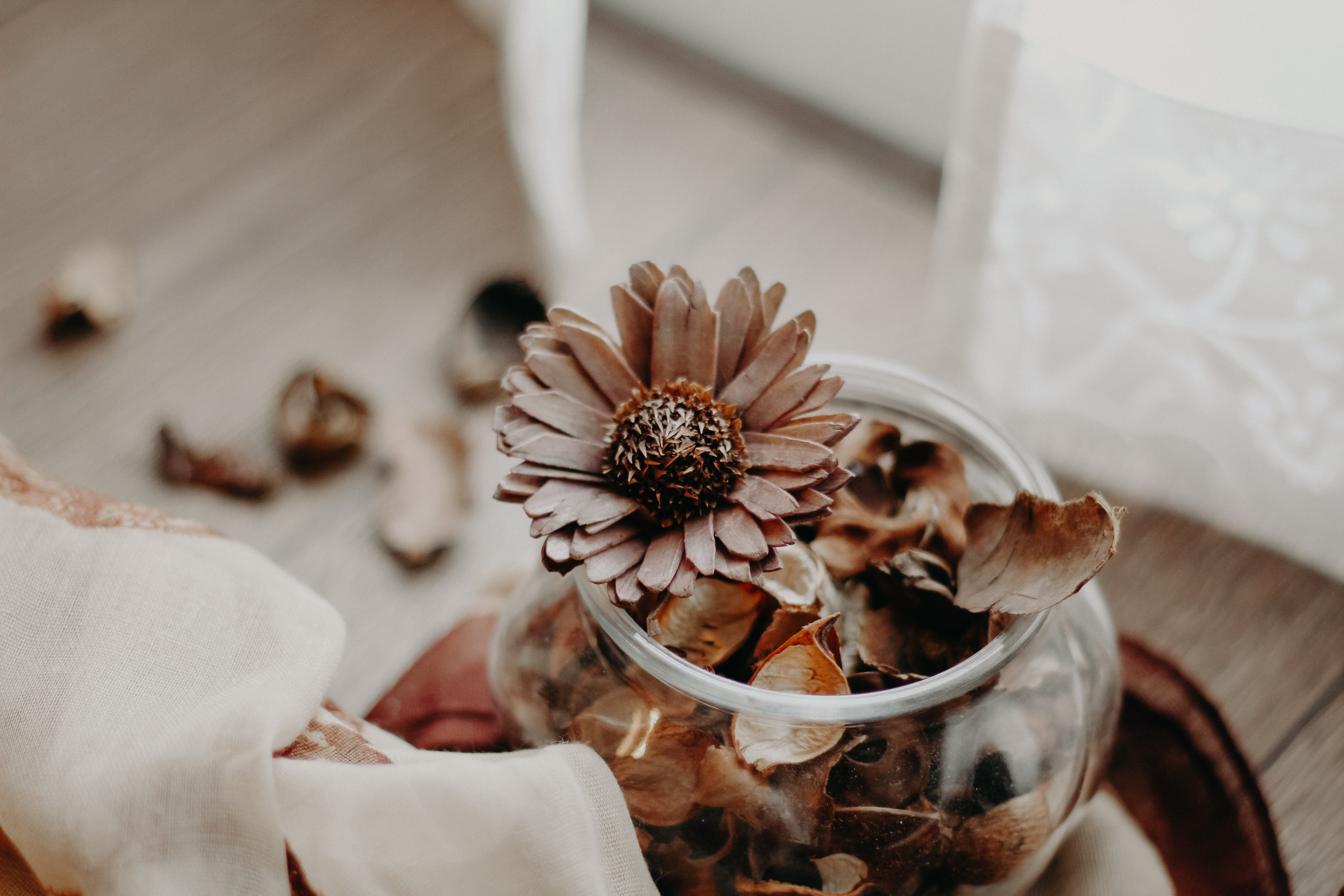 brown petaled flowers in vase inside room at daytime
