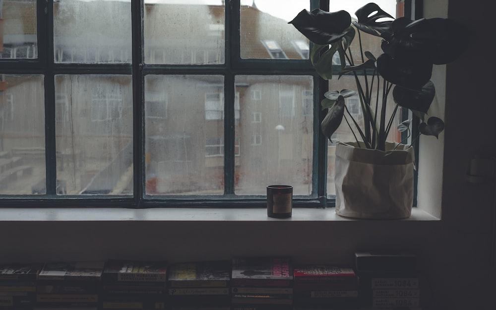 clear glass window near white ceramic vase