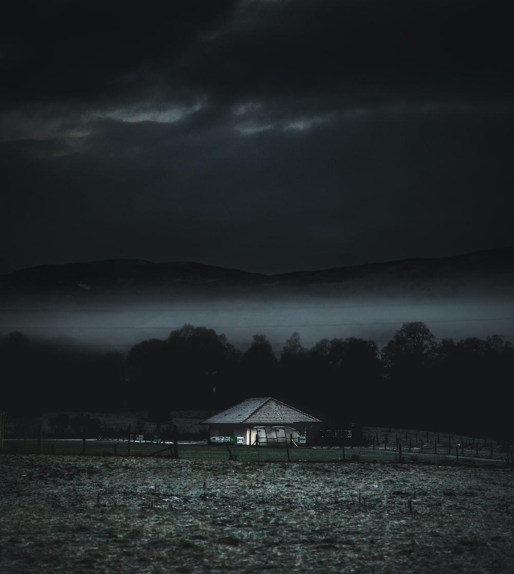 gray wooden house near trees