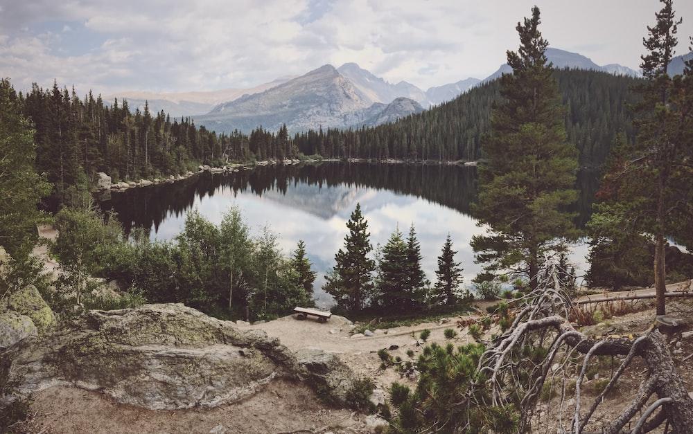 lake between trees near mountain range