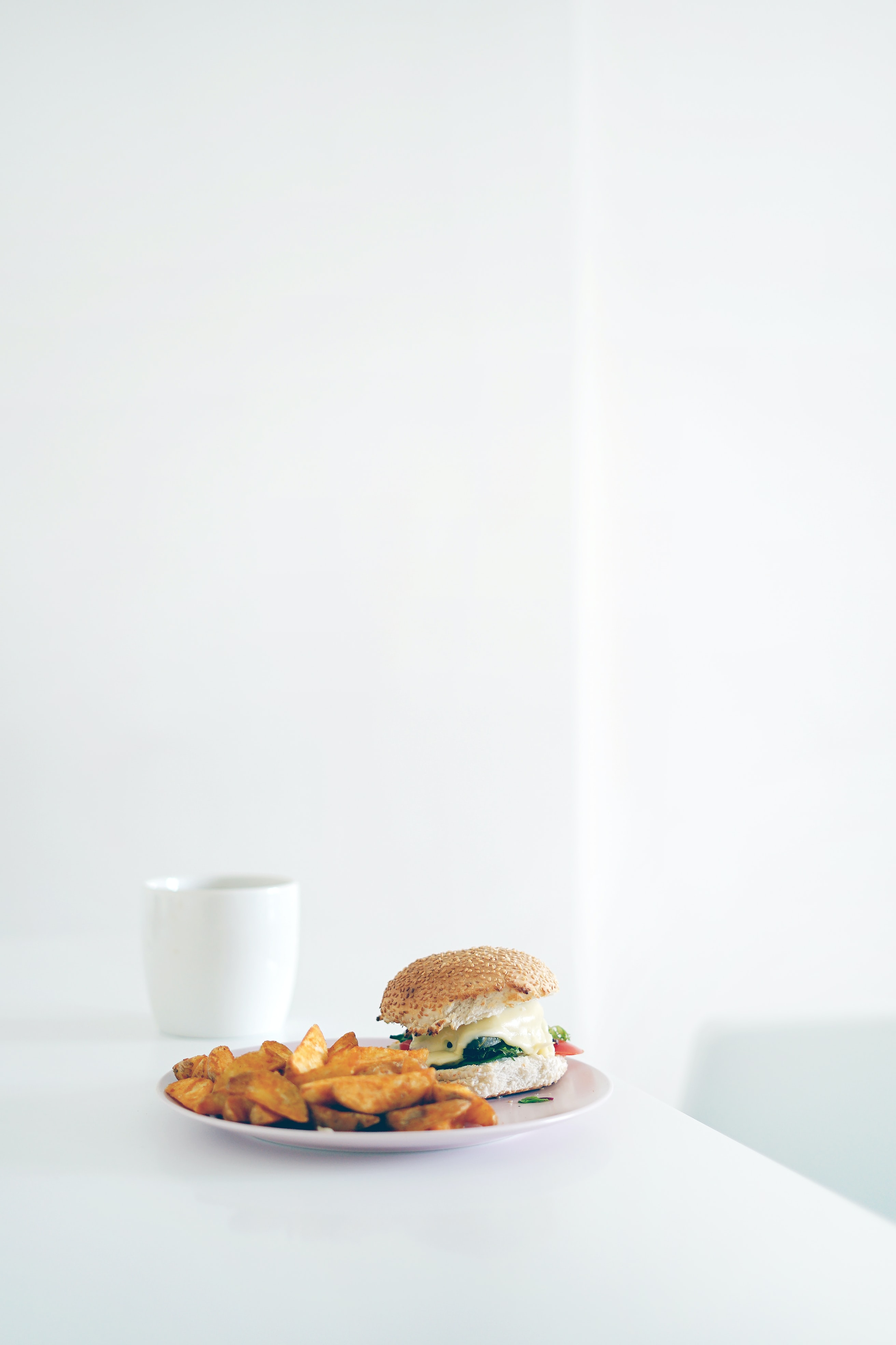 sandwich and potato fries on white plate