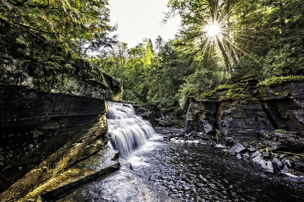 time-lapse photo of waterfalls surrounded by trees at daytime