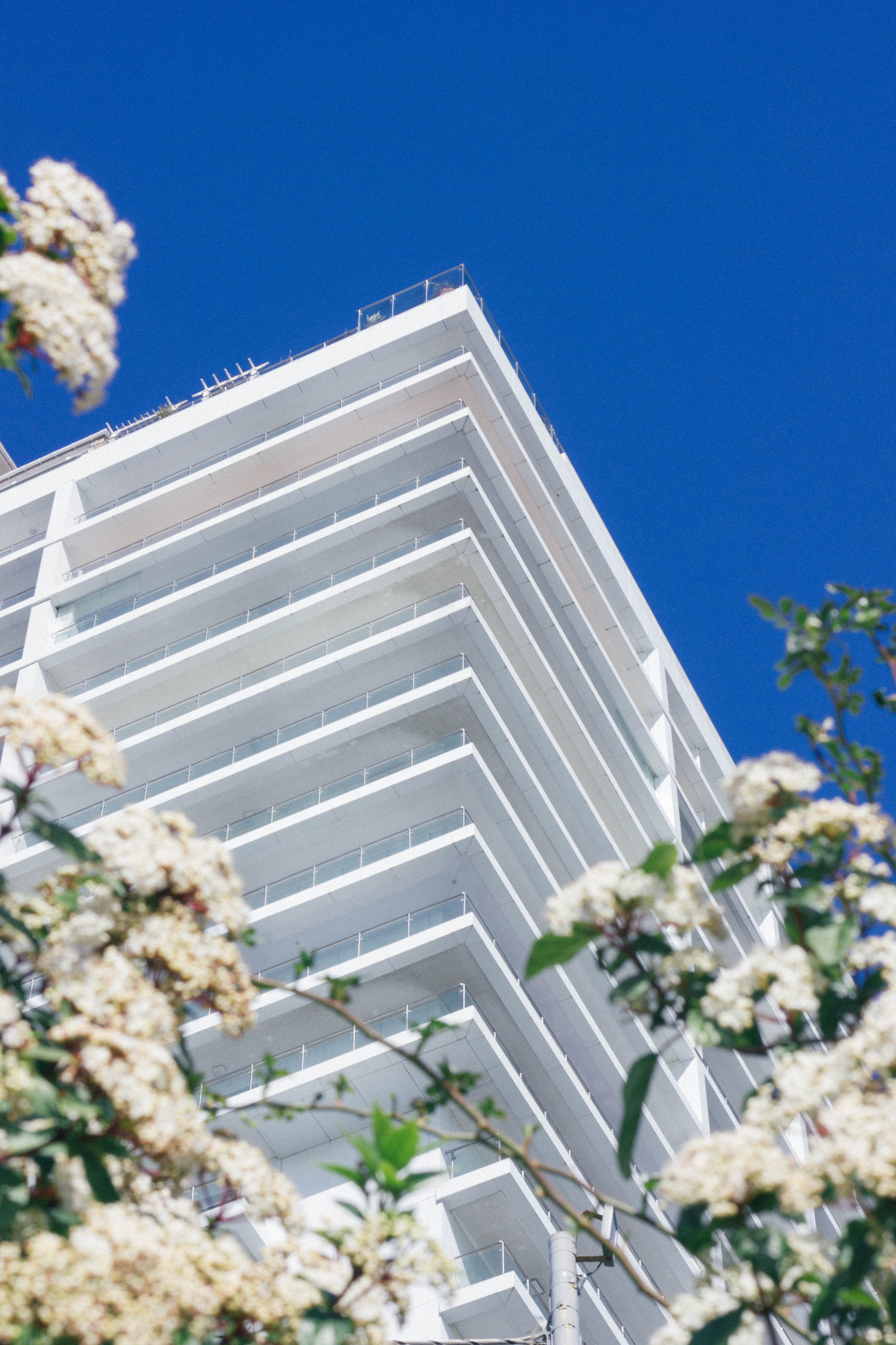 low angle photography of a white building