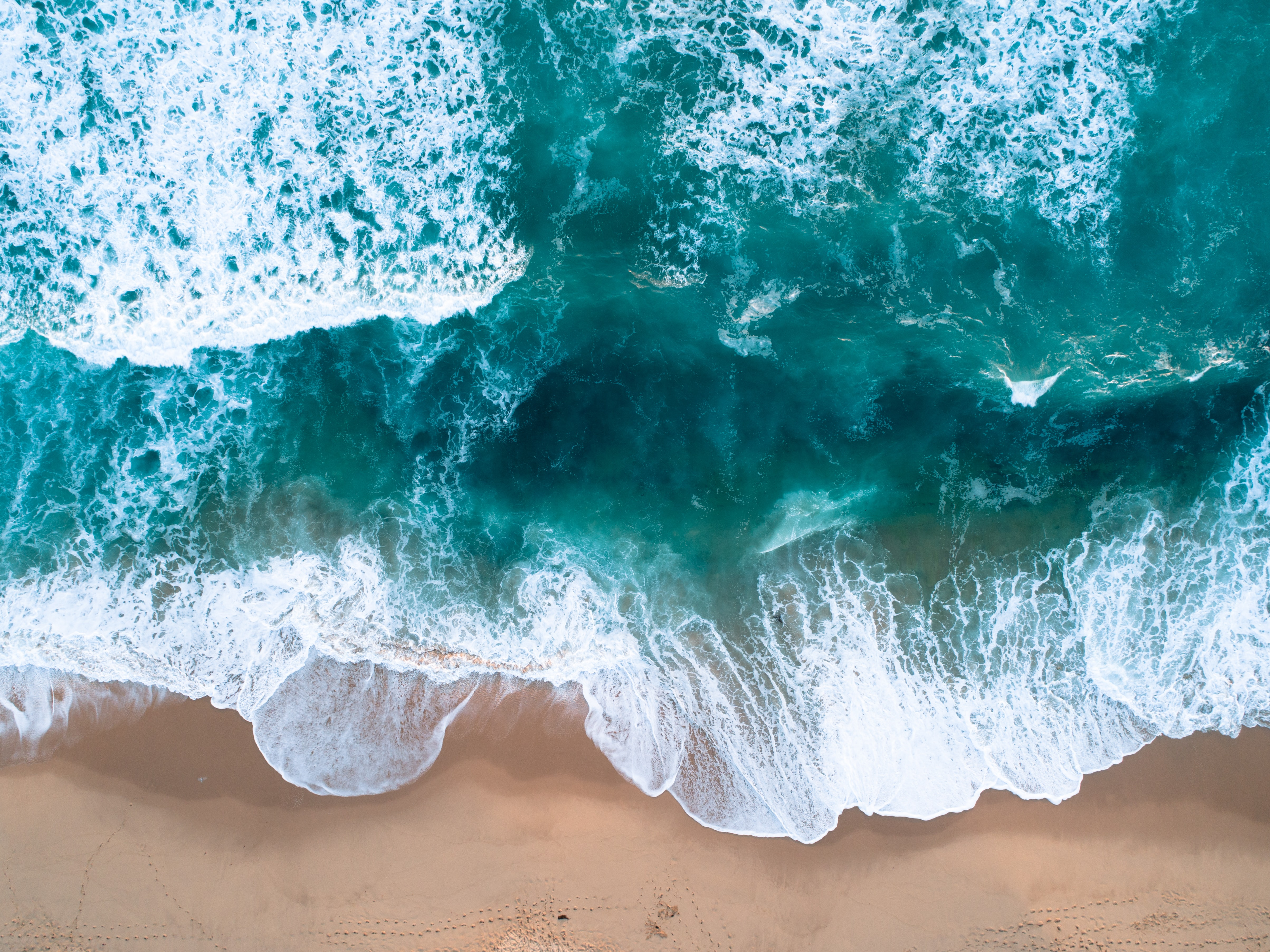 aerial photography of shoreline during daytime