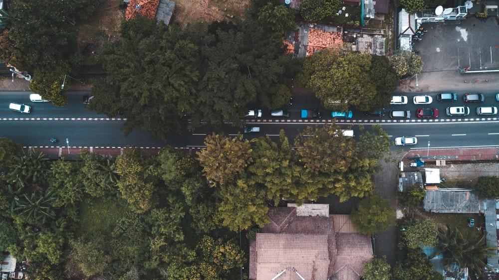 aerial view photography of traveling vehicles surrounded by trees during daytime